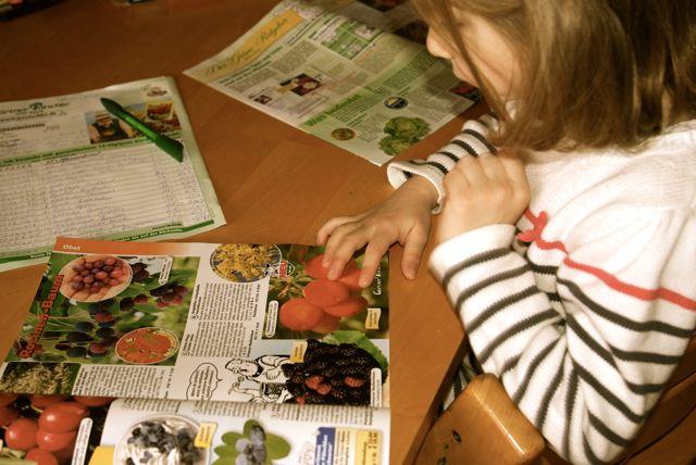 Friederike Gartenkatalog