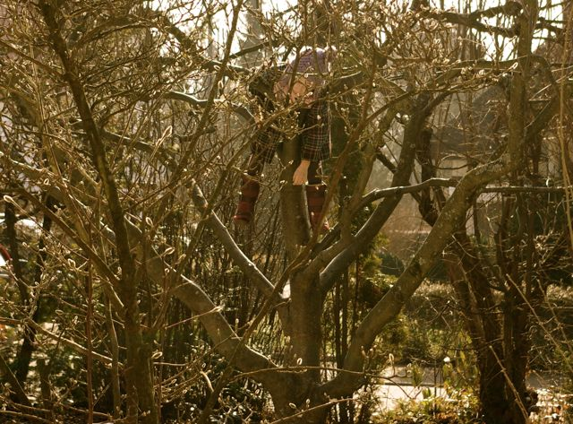 Charlotte im Baum