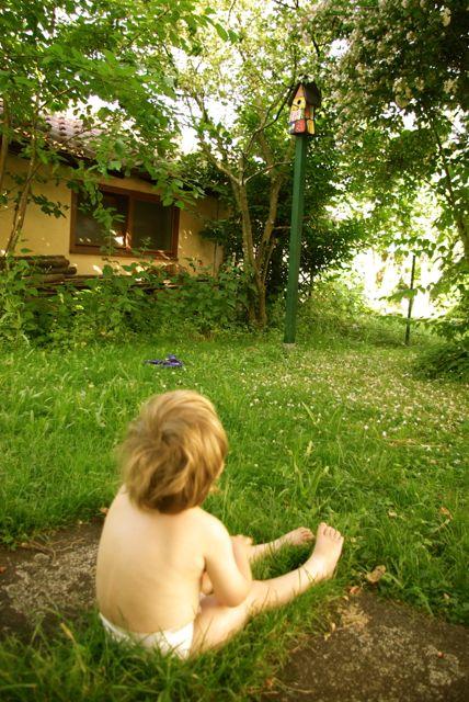 Jakob beim Vogelhaus