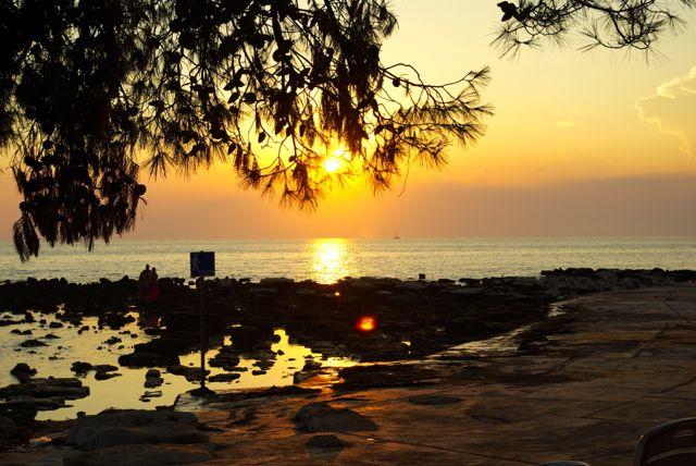 Sonnenuntergangspinien