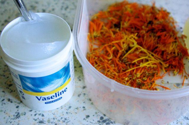 Ringelblumen und Vaseline