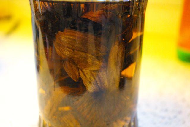 Echinaceatinktur