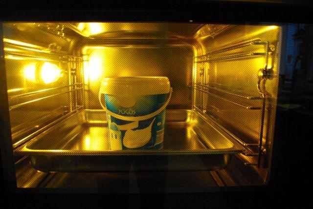 Joghurt Dampfgarer