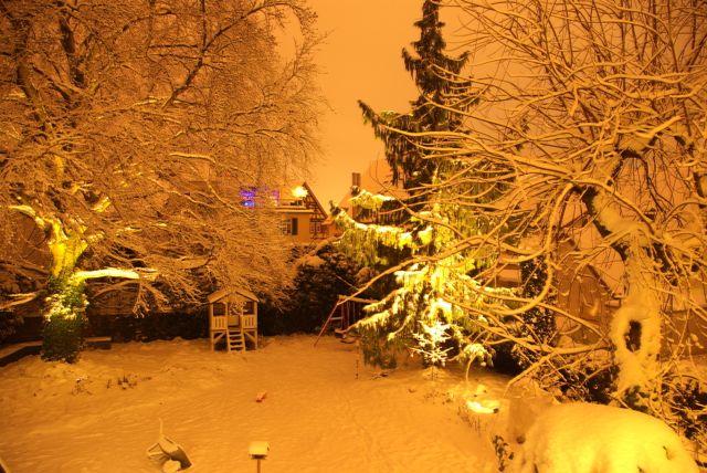 Nachtgarten2