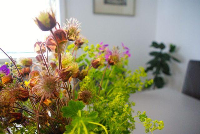 Wiesenblumen6