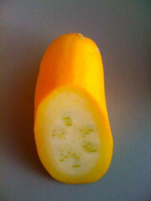 gelbe Zucchini1