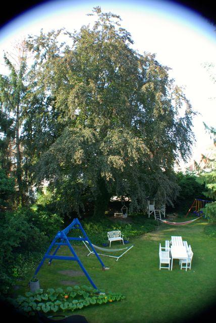 Septembergarten1