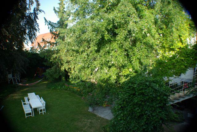 Septembergarten2