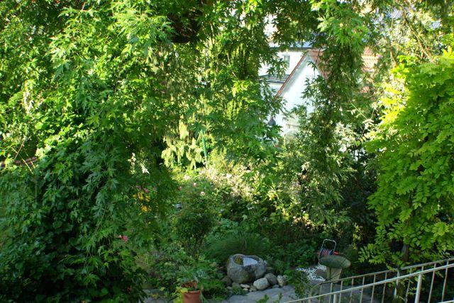 Septembergarten3